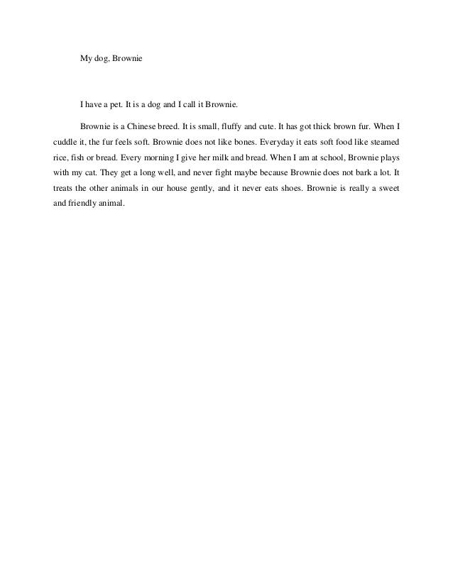Descriptive essay on my pet dog : Buy Original Essay - www.eveve.co.nz