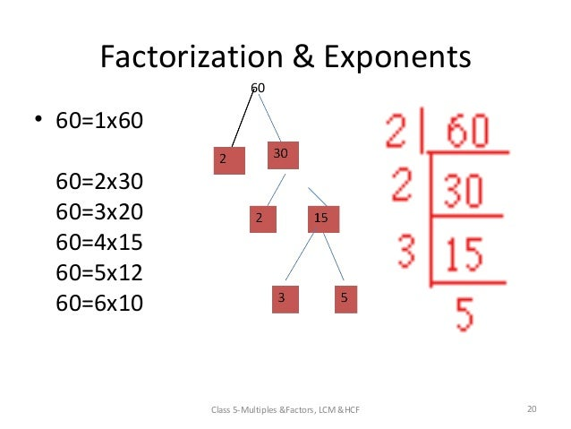 Factors and multiples worksheets year 5