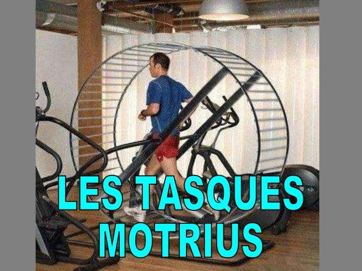 LES TASQUES  MOTRIUS