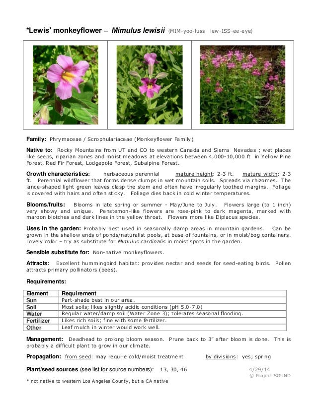 Lester rowntree talk   gardening sheets
