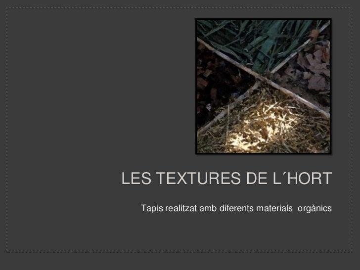 LES TEXTURES DE L´HORT  Tapis realitzat amb diferents materials orgànics