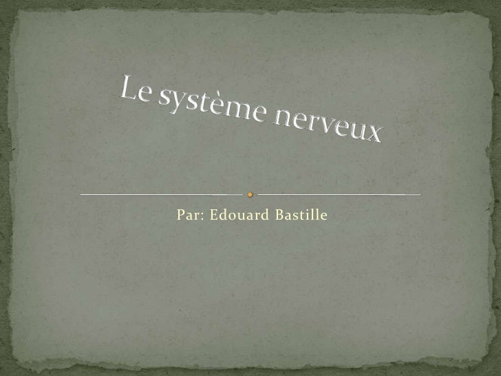 Par: Edouard Bastille<br />Le système nerveux<br />