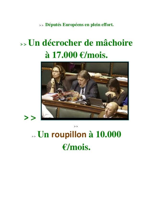 > > Députés Européens en plein effort. > > Un décrocher de mâchoire à 17.000 €/mois. > > > > > > Un roupillon à 10.000 €/m...