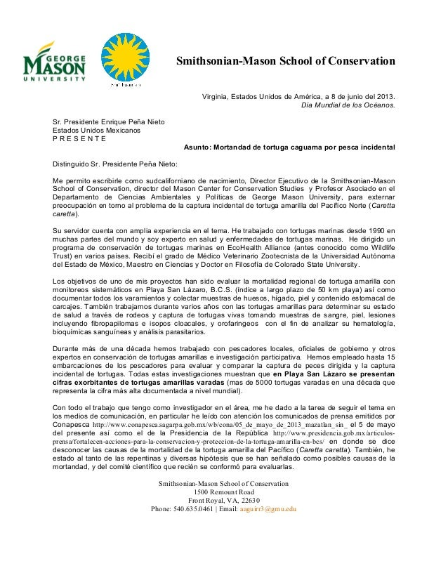 Sea Turtle Expert's Letter to Mexico's President on Net-Driven Mortality