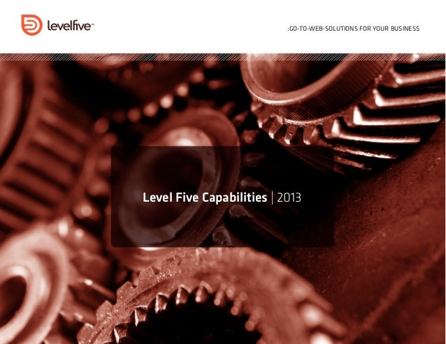 :GO-TO-WEB-SOLUTIONS FOR YOUR BUSINESSLevel Five Capabilities | 2013