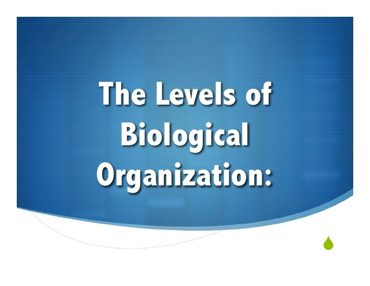 The Levels of  Biological Organization:                 