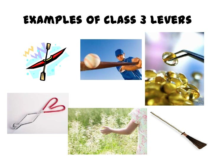 Examples Of Levers : Lever examples imgkid the image kid has it