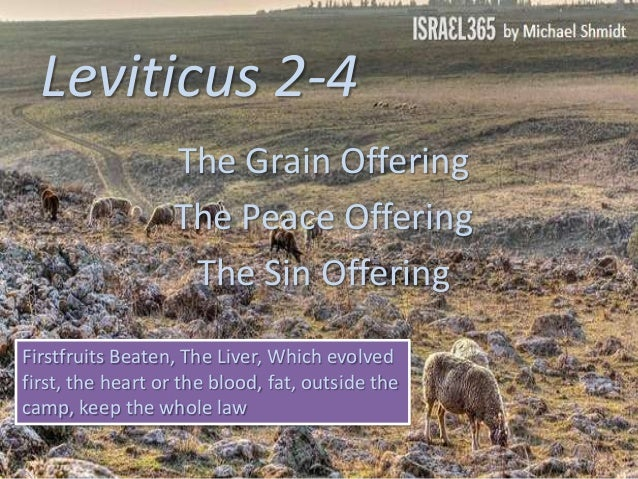 Leviticus 2-4, The Grain Offering, The Peace Offering, The Sin Offering,  Firstfruits Beaten, The Liver, Which evolved first, the heart or the blood, fat, outside the camp, keep the whole law