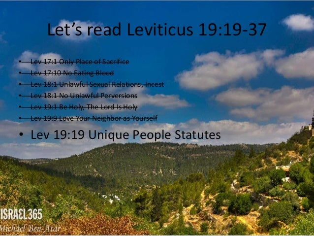 I'm writing a term paper on Leviticus 19..?