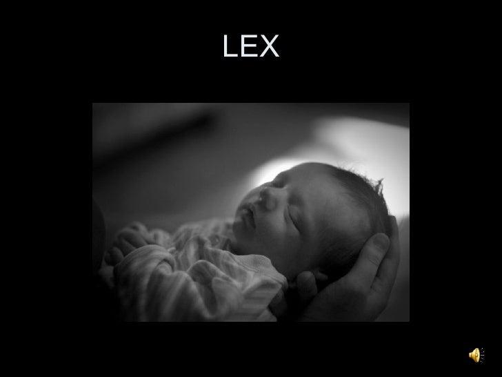 Lex   For Danny
