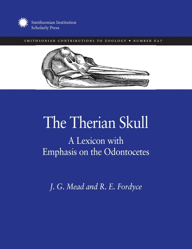Mead & Fordyce. Therian skull. A lexicon with emphasis on the odontocetes.