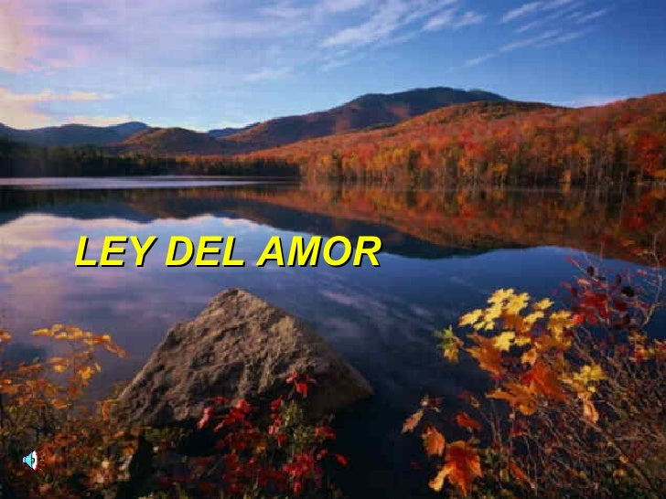 LEY DEL AMOR