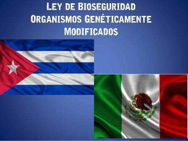 LEY DE BIOSEGURIDAD ORGANISMOS GENÉTICAMENTE MODIFICADOS
