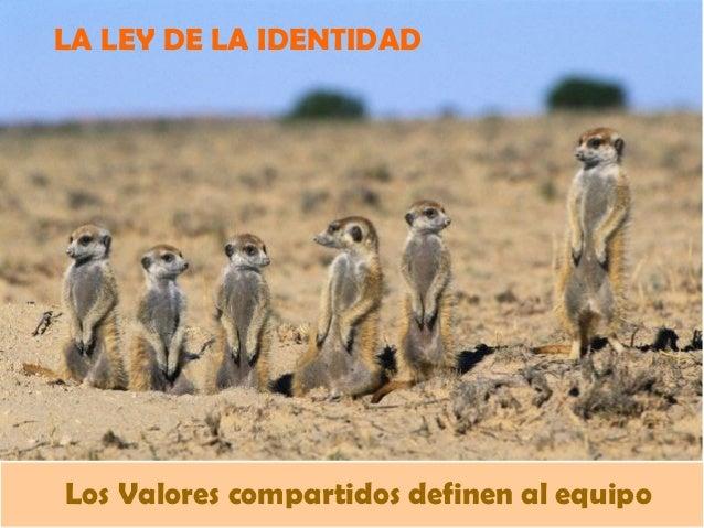 LA LEY DE LA IDENTIDAD Los Valores compartidos definen al equipo
