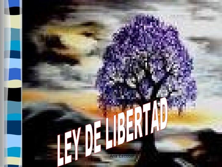 Ley de libertad