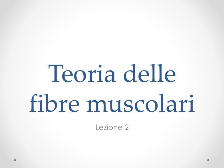 Teoria dellefibre muscolari     Lezione 2