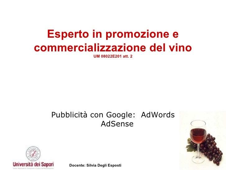 Esperto in promozione e commercializzazione del vino UM 08022E201 att. 2 Pubblicità con Google:  AdWords AdSense