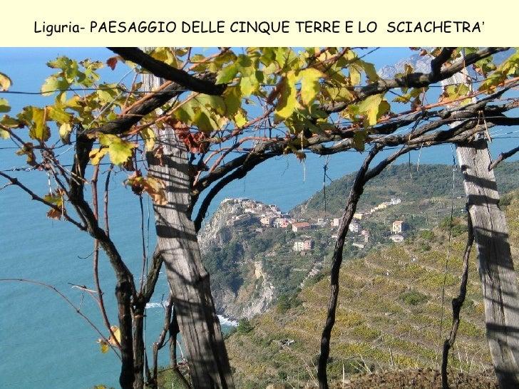 Liguria- PAESAGGIO DELLE CINQUE TERRE E LO  SCIACHETRA '