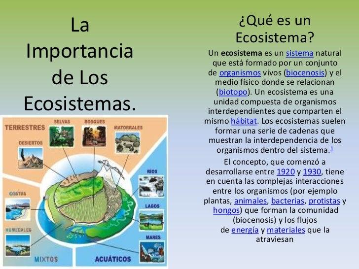 La importancia de los ecosistemas for Importancia de los viveros forestales
