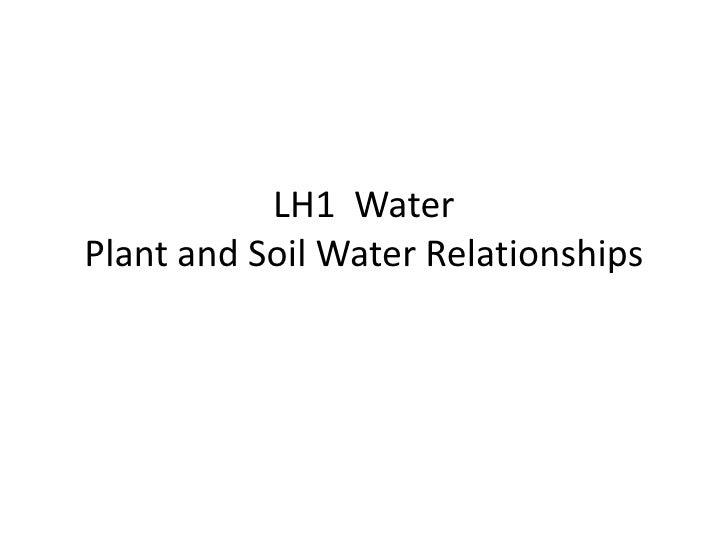 Lh1 water