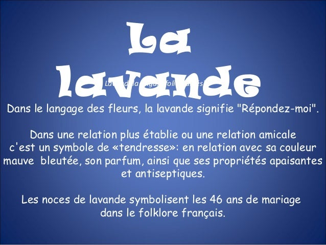 """LalavandeLavandula angustifolia (labiés)Dans le langage des fleurs, la lavande signifie """"Répondez-moi"""".Dans une relation p..."""
