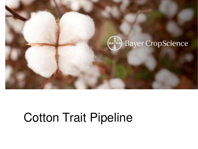 Cotton Trait Pipeline