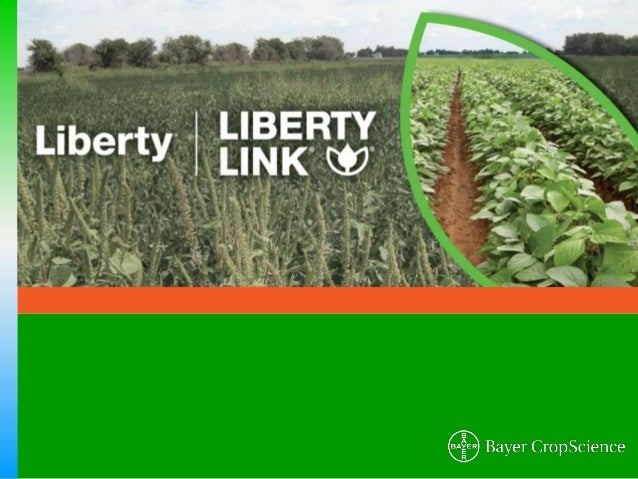 LibertyLink® Trait & Liberty® Herbicide - Soybeans