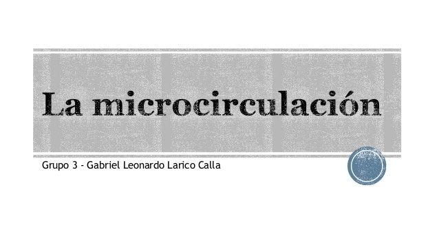 Grupo 3 - Gabriel Leonardo Larico Calla