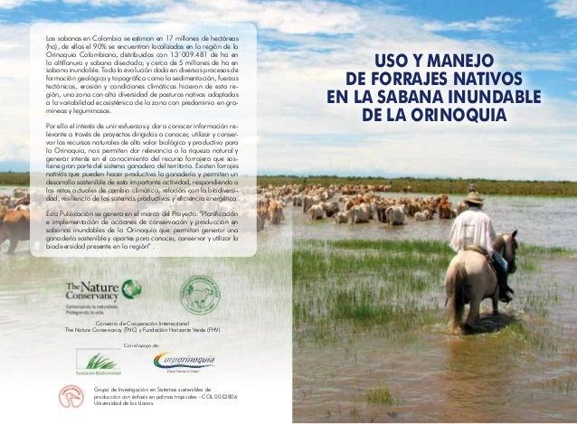 Las sabanas en Colombia se estiman en 17 millones de hectáreas (ha), de ellas el 90% se encuentran localizadas en la regió...