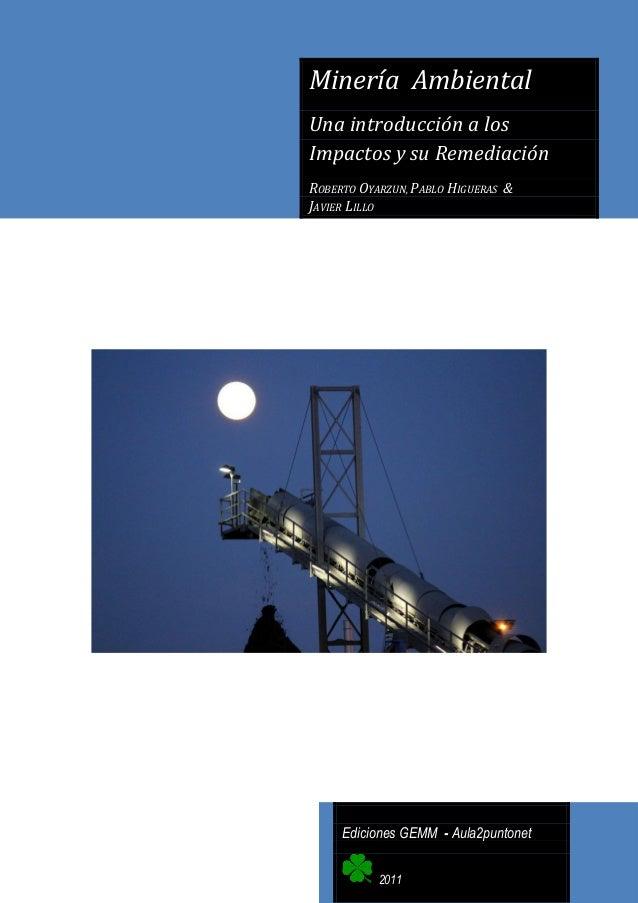 Minería Ambiental Una introducción a los Impactos y su Remediación ROBERTO OYARZUN, PABLO HIGUERAS & JAVIER LILLO  Edicion...