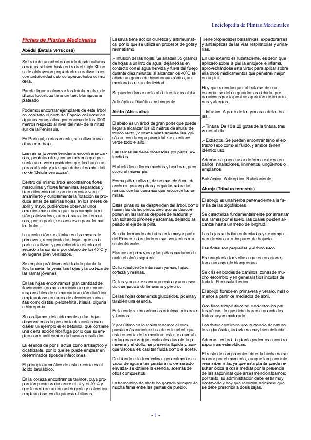 Enciclopedia de Plantas MedicinalesFichas de Plantas Medicinales                           La savia tiene acción diurética...