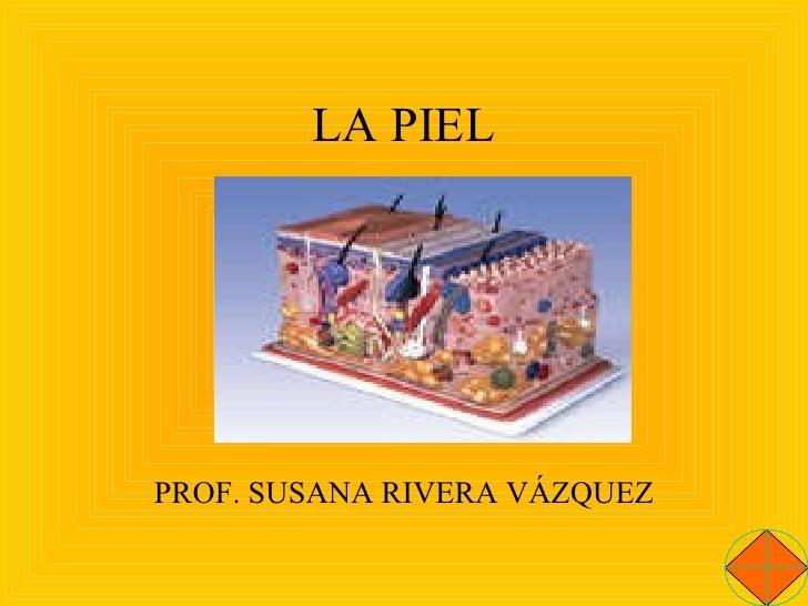 LA PIEL PROF. SUSANA RIVERA VÁZQUEZ