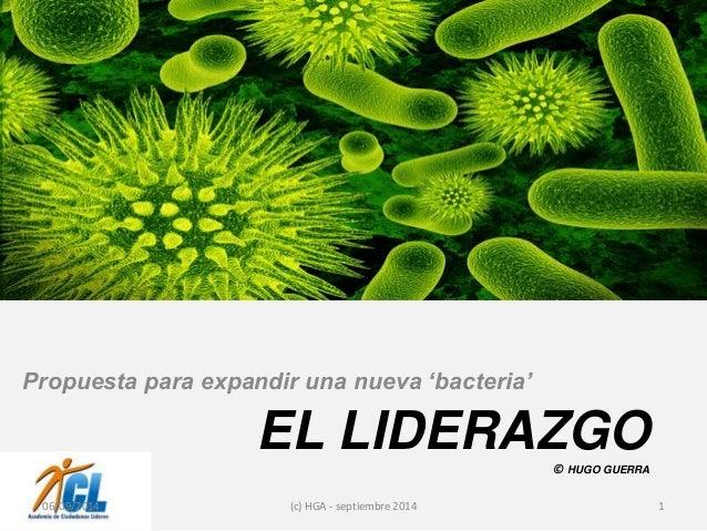 EL LIDERAZGO  © HUGO GUERRA  Propuesta para expandir una nueva 'bacteria'  06/09/2014 (c) HGA - septiembre 2014 1