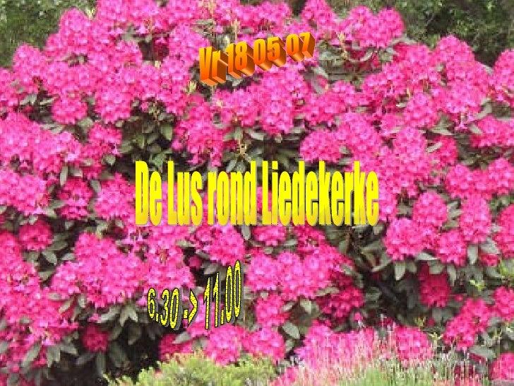 Vr 18 05 07  De Lus rond Liedekerke 6.30 -> 11.00