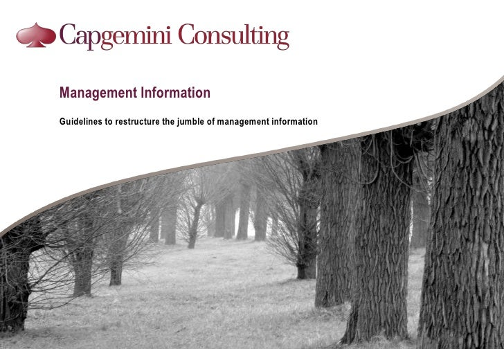 Management Information<br />Guidelines to restructure the jumble of management information<br />