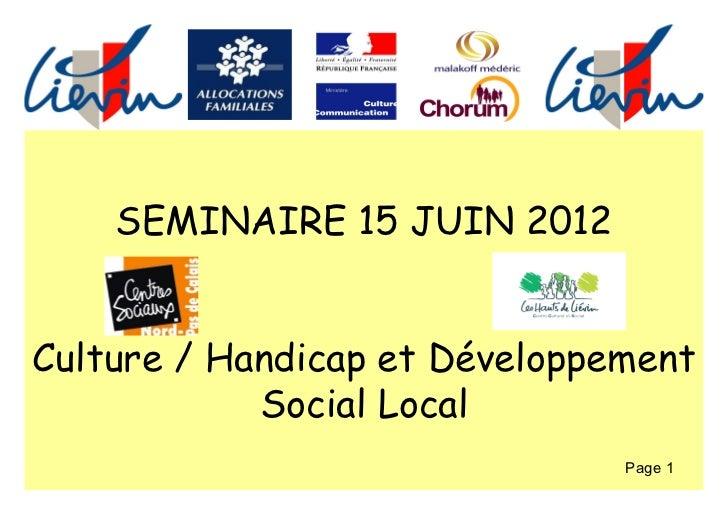 SEMINAIRE 15 JUIN 2012Culture / Handicap et Développement            Social Local                               Page 1
