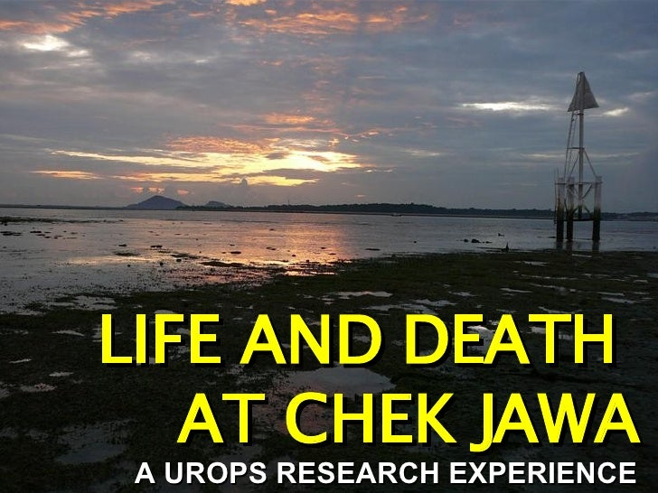 LIFE AND DEATH  AT CHEK JAWA A UROPS RESEARCH EXPERIENCE