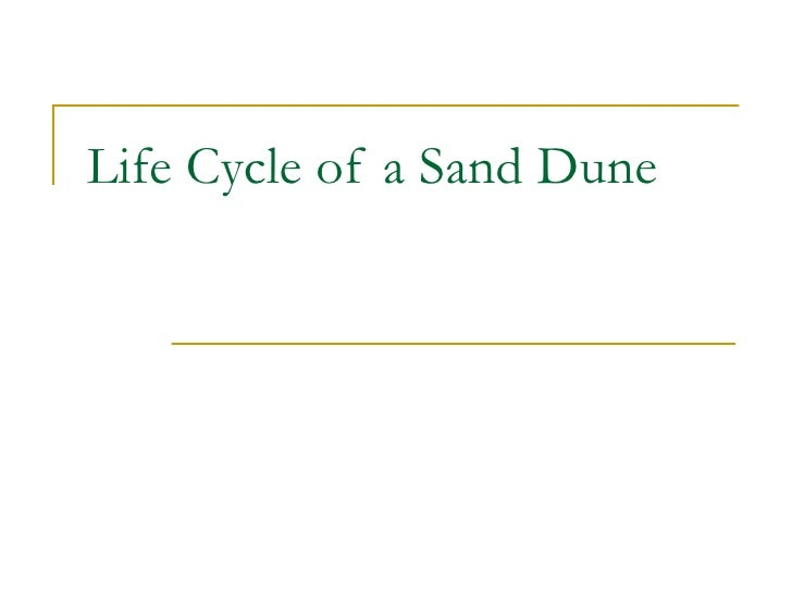 Life Cycle Of A Sand Dune