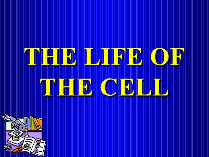 THE LIFE OF THE CELL