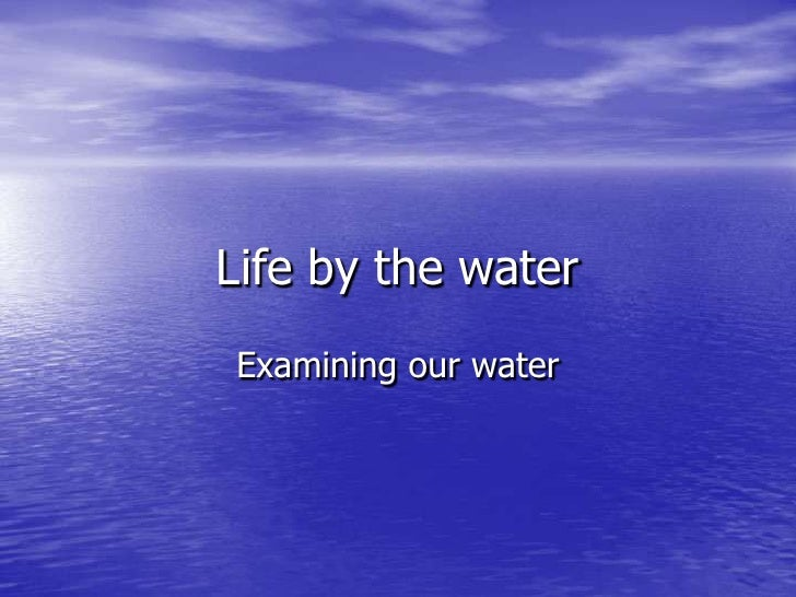 Life by the water<br />Examining our water<br />