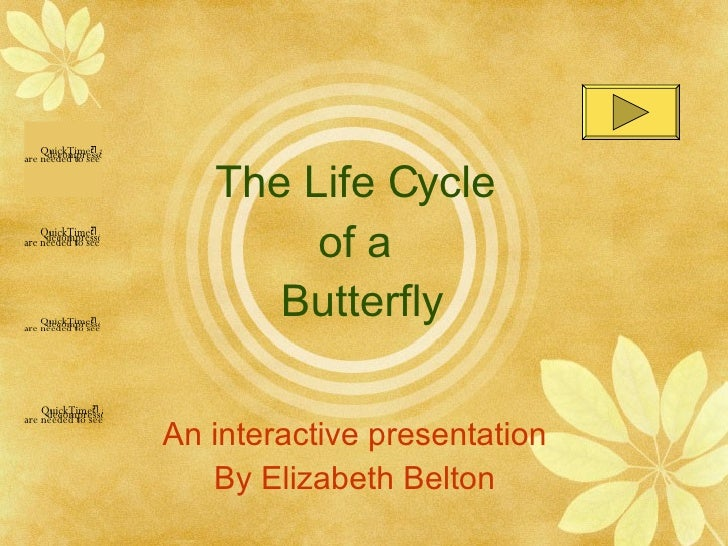 The Life Cycle  of a  Butterfly An interactive presentation By Elizabeth Belton