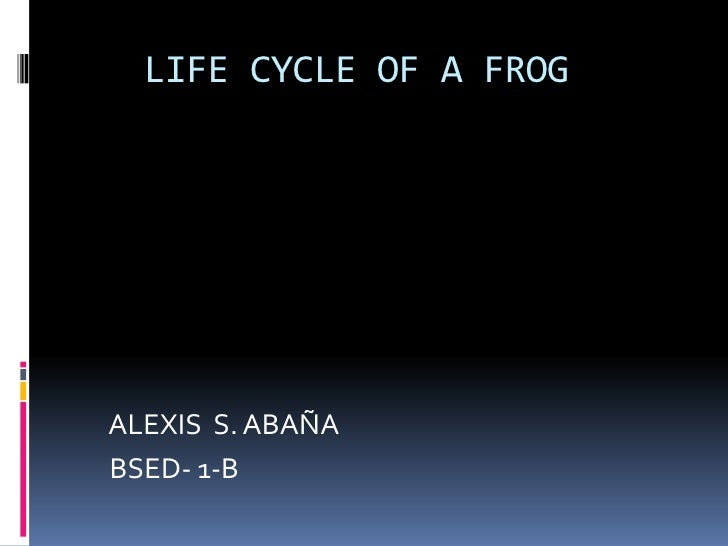 LIFE CYCLE OF A FROG<br />    ALEXIS  S. ABAÑA<br />   BSED- 1-B<br />
