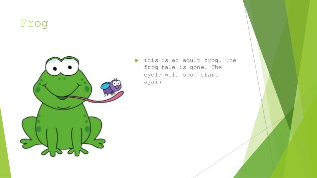 Life Cycle Of A Frog Bad Example
