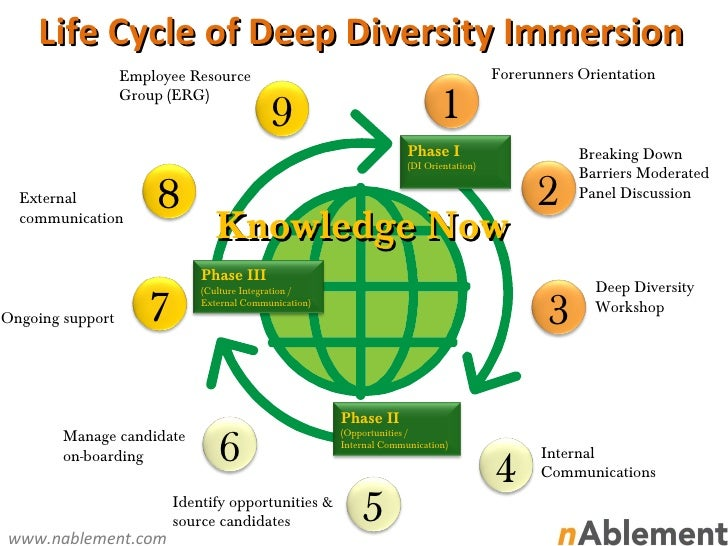 Life cycle of deep diversity immersion