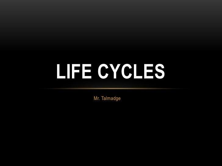 Mr. Talmadge<br />Life Cycles <br />