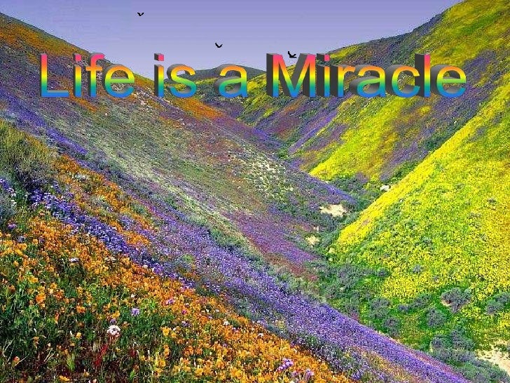 Life is a        miracle   Don't let it slip        away,  Open your heart to        others each Give of yourself        d...