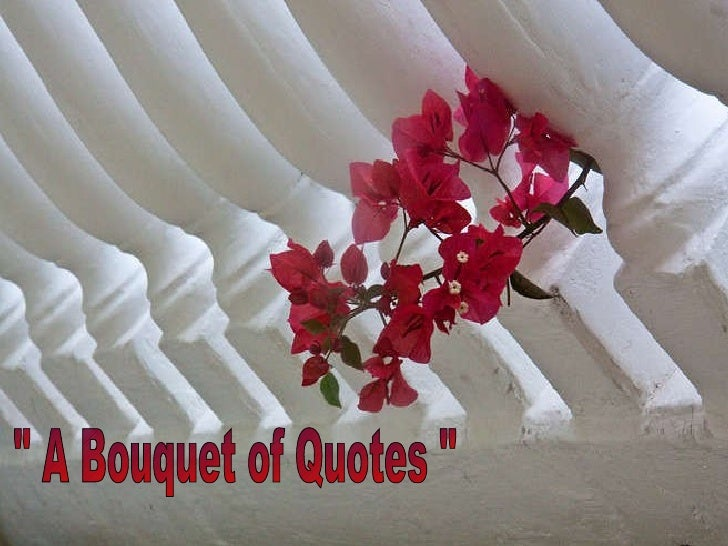 """ A Bouquet of Quotes """