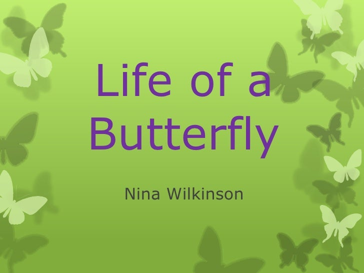 Life of a butterfly  nina wilkinson