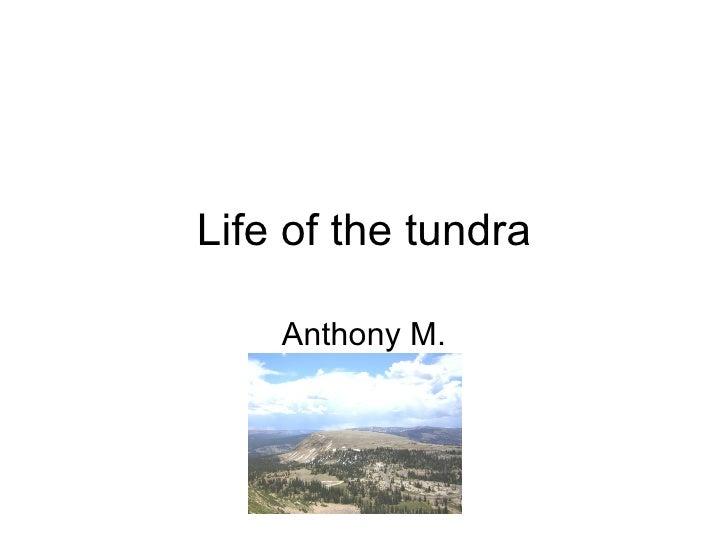 Life of the tundra Anthony M.
