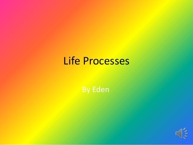 Life processes informatin report.eden